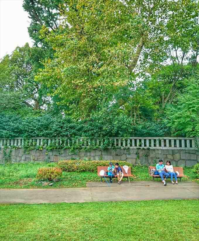 芝公園のベンチ
