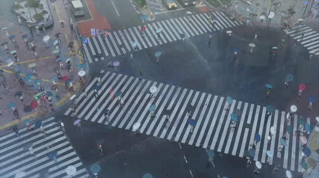 『天気の子』映画舞台_渋谷スクランブル交差点